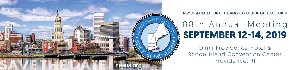 New England Section of the American Urological Association
